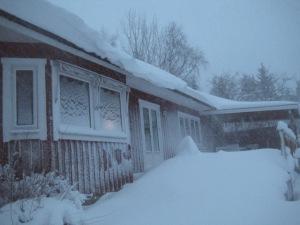 snöstorm 003