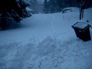 snöstorm 004
